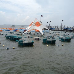 Photo taken at Seacrets by Adam C. on 9/4/2012
