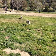Photo taken at Laurel Canyon Dog Park by Stella S. on 3/10/2012