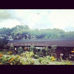 Photo taken at Starbucks Coffee 福岡大濠公園店 by stbaimer on 9/11/2012