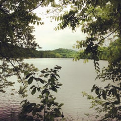 Photo taken at Radnor Lake State Park by Adrienne F. on 4/17/2012