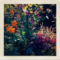Photo taken at Sherwood Gardens by Megan E. on 9/10/2012
