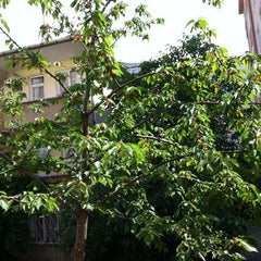 Photo taken at Cihadiye Caddesi by Deniz B. on 5/19/2012