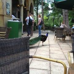 Photo taken at Van der Valk Hotel Avifauna by Michel on 6/30/2012