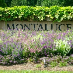 Photo taken at Montaluce Vinyard and LeVigne Restaurant by Danielle M. on 8/12/2012