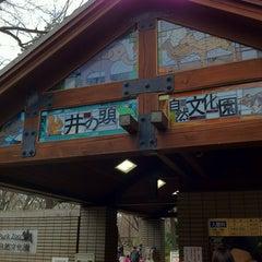 Photo taken at 井の頭自然文化園 by yusuke h. on 3/25/2012