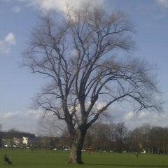 Photo taken at Peckham Rye Common by D D. on 3/3/2012