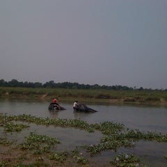 Photo taken at Chitwan Jungle Wildlife Camp by Serap K. on 5/11/2012
