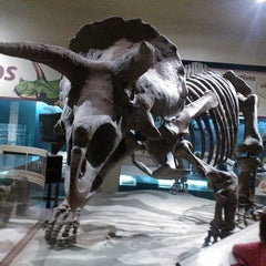 Photo taken at Dinosaurs/Hall of Paleobiology Exhibit by Russ C. on 6/12/2012