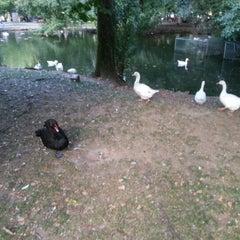 Photo taken at Parque de Ferrera by Juan Fco M. on 8/20/2012
