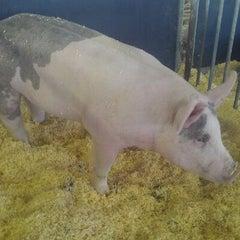 Photo taken at Swine Barn by Dustin K. on 6/7/2012