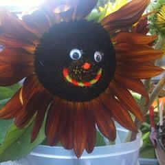 Photo taken at Oswego Farmers Market by Amanda S. on 9/13/2012