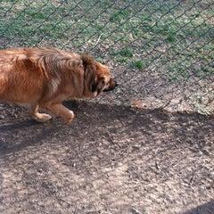 Photo taken at Sepulveda Basin Off-Leash Dog Park by Danny D. on 2/19/2012