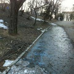 Photo taken at Parcul Romniceanu by Dan C. on 3/17/2012