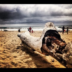 Photo taken at Sea Crest on the Ocean by Tatiana C. on 8/12/2012