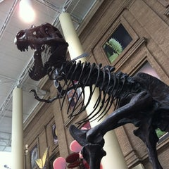 Photo taken at Denver Museum of Nature and Science by Chris R. on 5/13/2012