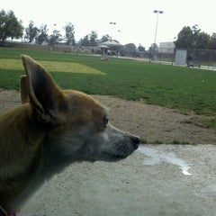 Photo taken at Central Bark by Judy M. on 6/12/2012