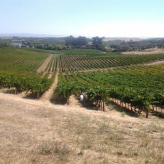 Photo taken at Artesa Vineyards & Winery by David Anthony Temple (. on 8/20/2012
