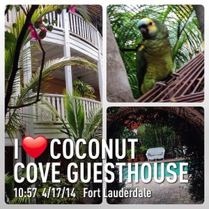 Photo of Coconut Cove Guesthouse