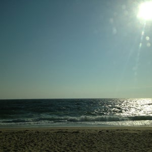 Cove gay herring beach