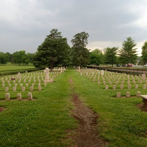 image for Battle Scarred: The 150th Anniversary of the Battle of Franklin