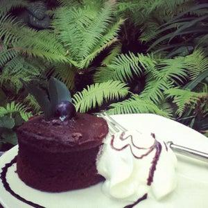 Fern Forest Café (�?�?ิร�?�? �?อร�?�?รส �?า�?�?�?)