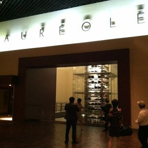 Photo of Aureole