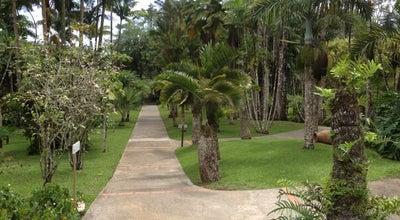 Photo of Botanical Garden Jardin de Balata at Route De Balata, Fort-de-France 97200, Martinique