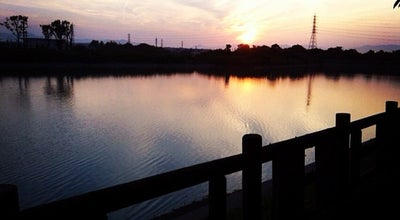 Photo of Park 石垣池公園 at 桜島町7丁目1−1, 鈴鹿市, Japan