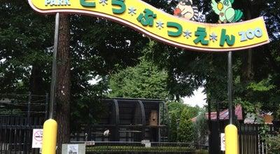 Photo of Arts and Entertainment 大宮公園小動物園 at 大宮区高鼻町4, さいたま市 330-0803, Japan