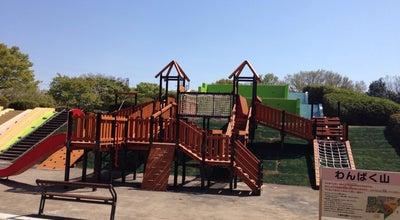 Photo of Playground 都立小金井公園 わんぱく山 at Japan