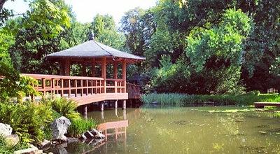 Photo of Garden Ogród Japoński | Japanese Garden at Mickiewicza, Wrocław, Poland