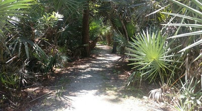 Photo of Trail Hog Hammock Trail at West Palm Beach, FL, United States