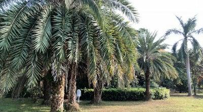 Photo of Park 荔香公园 Lixiang Park at 南山区南光路288号, 深圳市, 广东, China