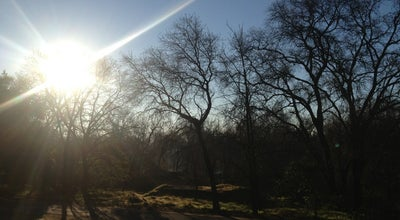 Photo of Trail American River Trail By Watt at Sacramento, CA, United States