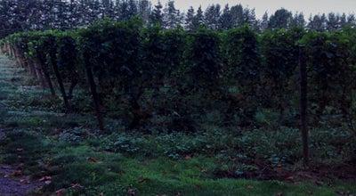 Photo of Winery Ponzi Vineyards at 14665 Sw Winery Ln, Beaverton, OR 97007, United States