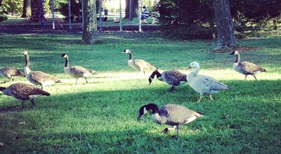 Photo of Park Nichols Park at NJ, United States