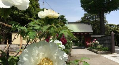 Photo of Buddhist Temple 安養寺 at 吉祥寺東町1-1-21, 武蔵野市, Japan