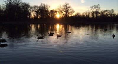 Photo of Lake University Hills Duck Pond at 3400 Stanford Street, Hyattsville, MD 20783, United States