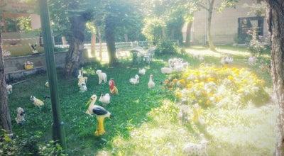 Photo of Tea Room kiz meslek lisesi  cay bahcesi at Turkey
