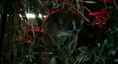Photo of Zoo Birmingham Nature Centre at Pershore Rd., Birmingham B5 7RL, United Kingdom