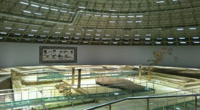 Photo of History Museum Haleplibahçe Mozaik Müzesi at Sanliurfa 63000, Turkey