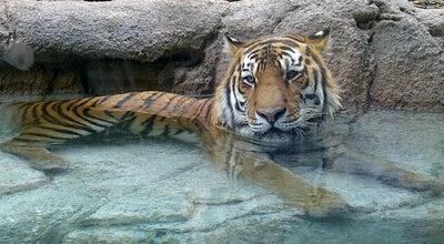 Photo of Zoo Hogle Zoo at 2600 E Sunnyside Ave, Salt Lake City, UT 84108, United States