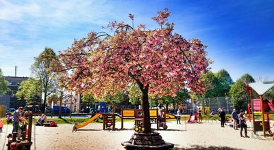 Photo of Playground Onder de Linden at Agnietenstraat, Arnhem, Netherlands