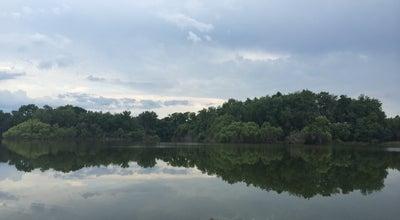 Photo of Lake Lake Alice at Gainesville, FL 32603, United States