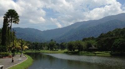 Photo of Lake Taman Tasik Taiping (Lake Garden) at Jln. Taman Tasik, Taiping 34000, Malaysia