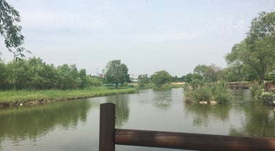 Photo of Trail 하남생태공원 갈대밭 at 미사동 617, 하남시 465-140, South Korea