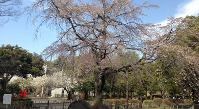 Photo of Park 熊谷中央公園 at 宮町2-37-1, 熊谷市, Japan