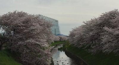 Photo of Arcade 奈良バッティングセンター at 奈良市, Japan