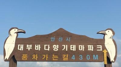 Photo of Theme Park 대부바다향기 테마파크 at 단원구 대부북동, Ansan, Korea, Republic Of, South Korea