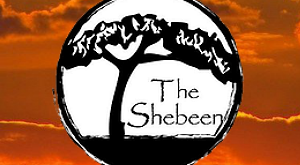 Photo of African Restaurant The Shebeen Pub & Braai at 247 Ridge Mcintire Rd, Charlottesville, VA 22903, United States